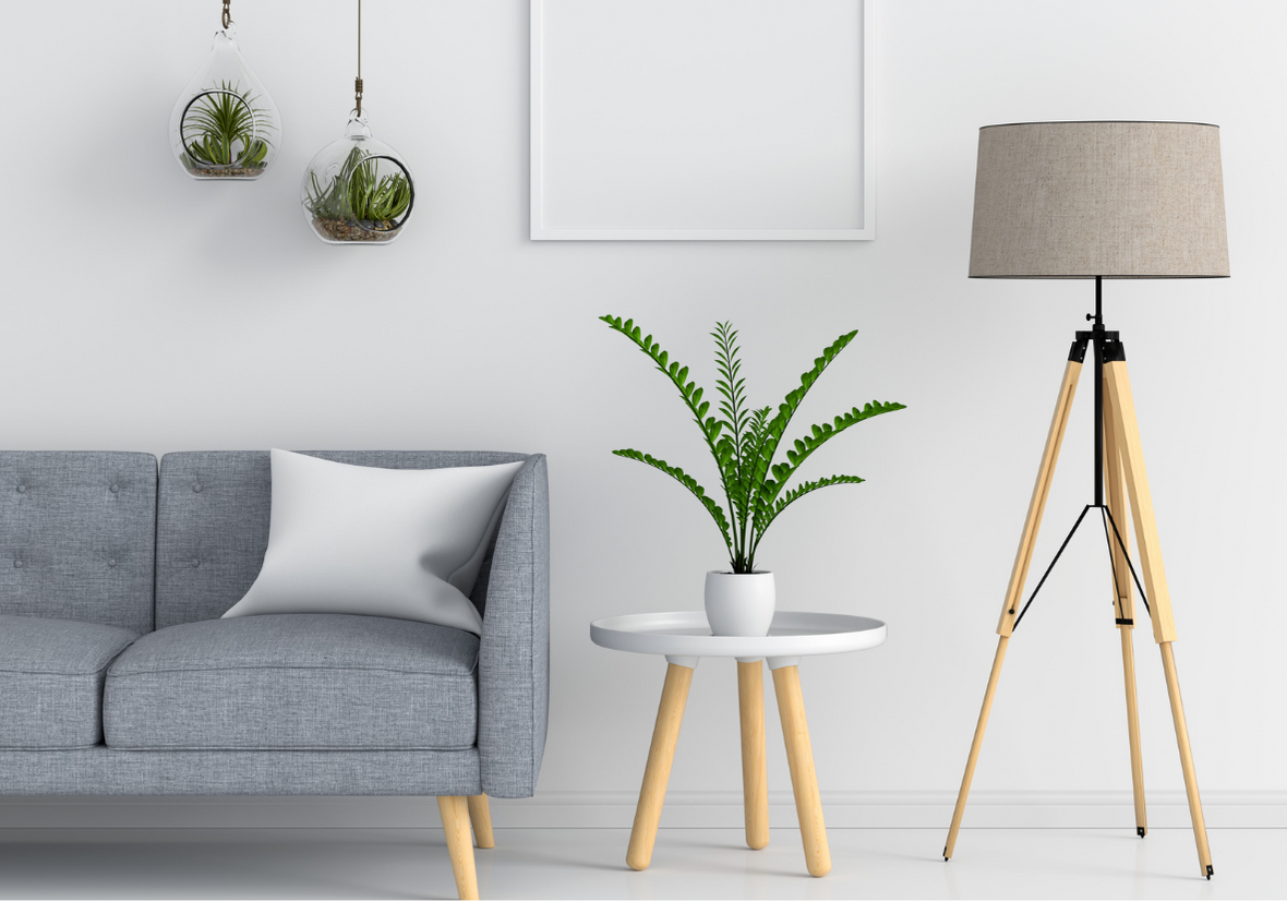 STANDARD HOME RENOVATION PACKAGE IMAGE OF GREY COUCH AND BROWN LAMP WITH A PLANT ON THE SIDE TABLE